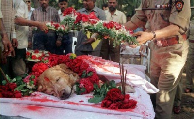 Rest in Peace Zanjeer