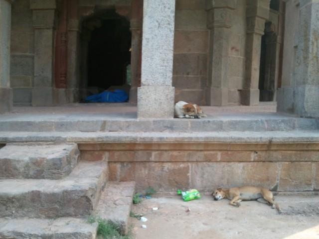 Гробница Мухаммада Шаха-1