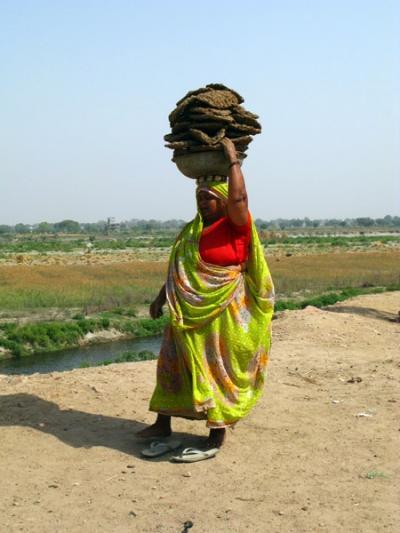 Фото дня: Тетка с кизяками