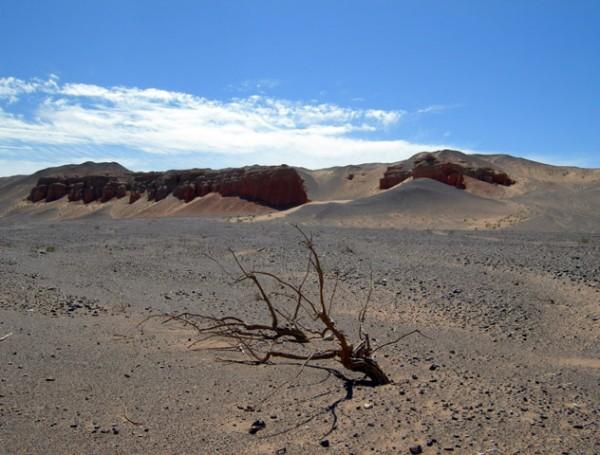 Подъехали к каньону Хермен Цав