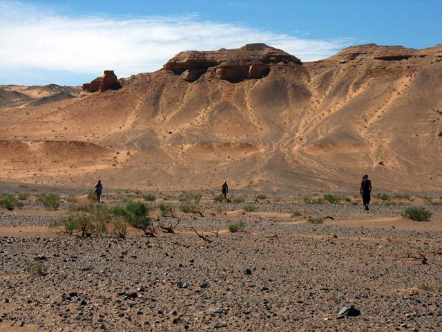 Пейзаж с пришельцами. Хермен Цав, пустыня Гоби