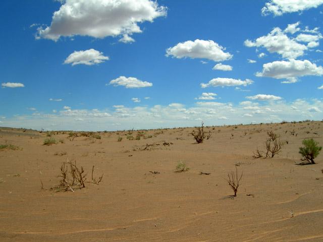 Земля и Небо. Монголия, пустыня Гоби