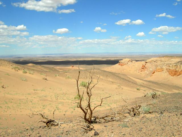 Окрестности каньона Хермен Цав, пустыня Гоби