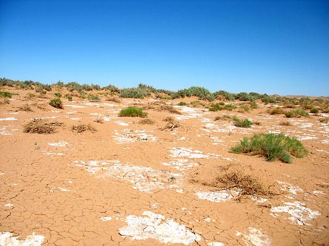 Глиняное болото