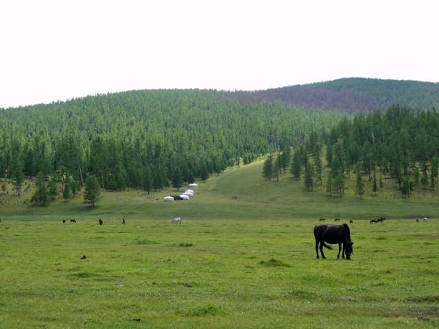 Совсем другая Монголия