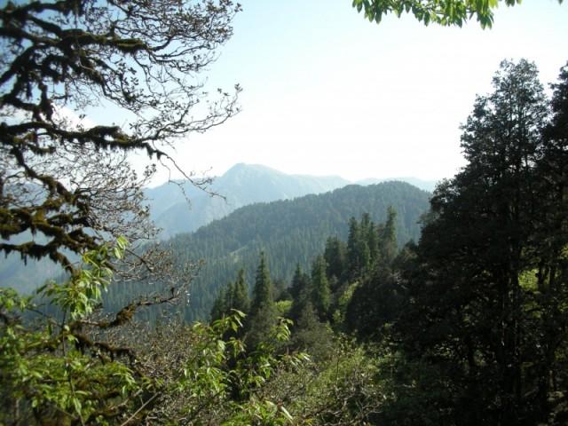 к перевалу Jalori