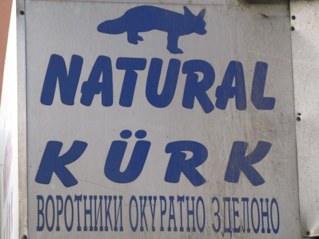 Русский язык в Стамбуле знают и любят