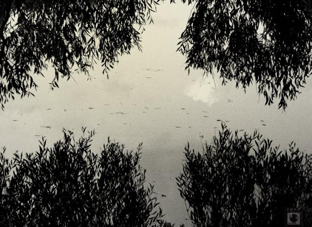 Озеро. Заколодованное.