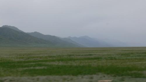Степь да степь кругом. В общем-то типичный казахстанский пейзаж.