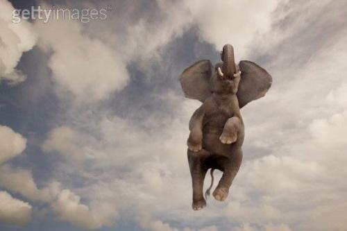 про летающих слонов тож можна....