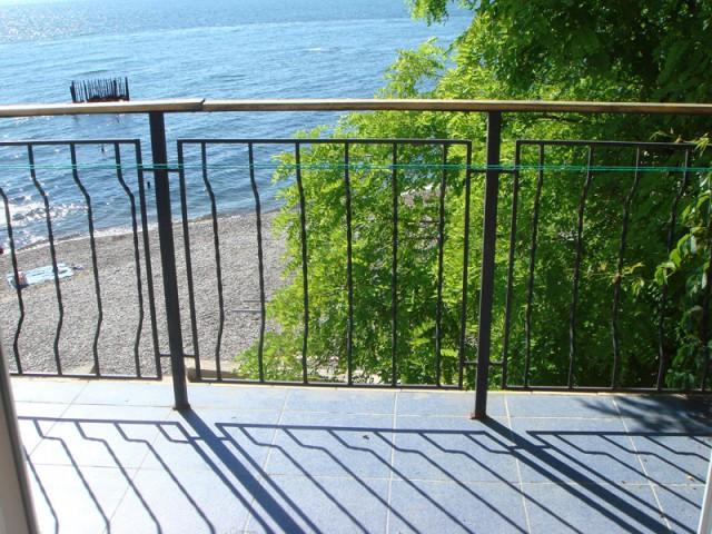 Балкончег, вид номер 2