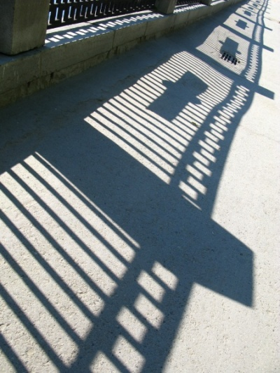 Между светом и тенью