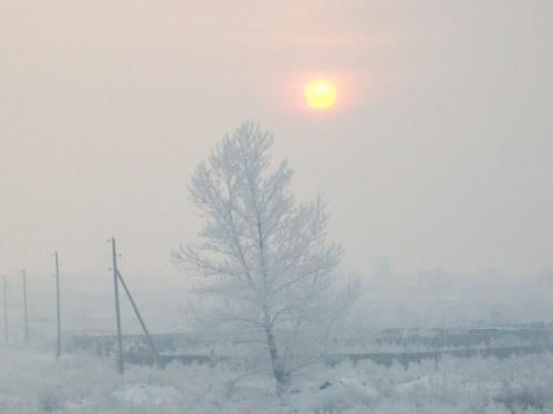 Мороз и солнце... и туман