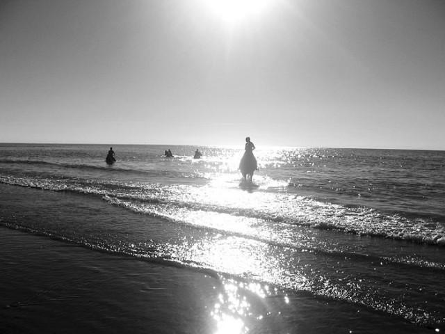 Иногда из моря...