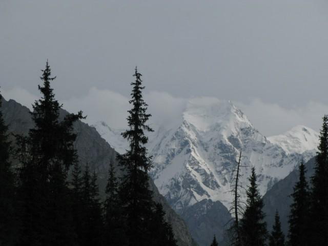 12 видов двухглавной горы, Тянь-Шань
