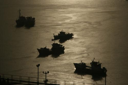 Утро в заливе