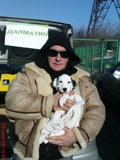 Новости мировой экономики : у нас, как и у Shanti, белые собаки - способ существования