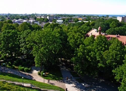 вид с Вышгородa