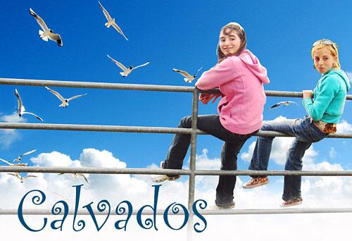 Про Кальвадос и синее небо