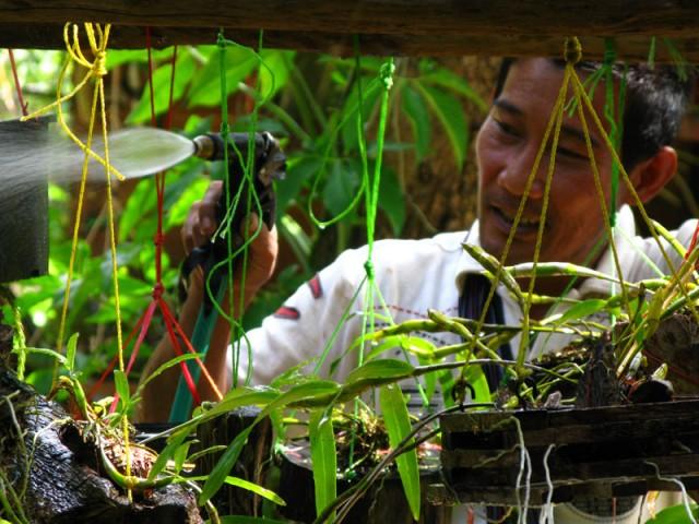 Садовник Порн и его малютки...
