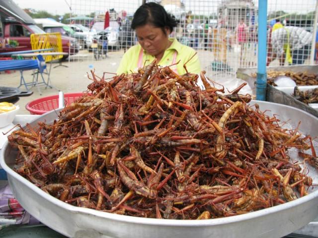 Ешь тараканов, гусениц жуй, всем покажи, что ты не буржуй!