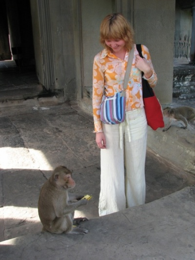 Любопытные обезьяны