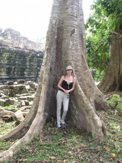 Дружелюбное дерево