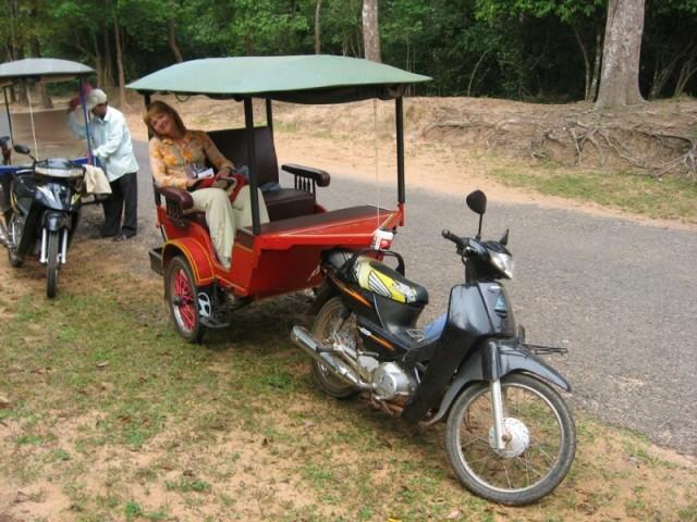 Паланкин на колесах