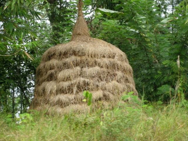 Стог сена. Мьянмарский.