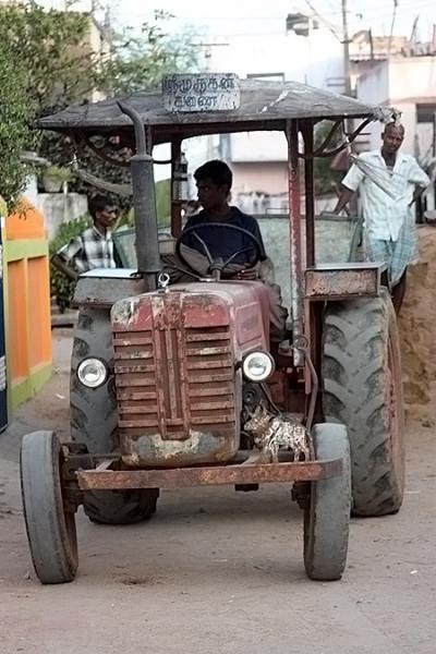 Смотрите, у левого колеса - корова. Тоже, наверное, не с проста.