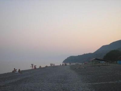 max- замеченое кол.человеков на пляже в сезон....