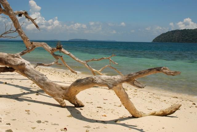 идти можно только вдол берега....внутри настоящие джунгли