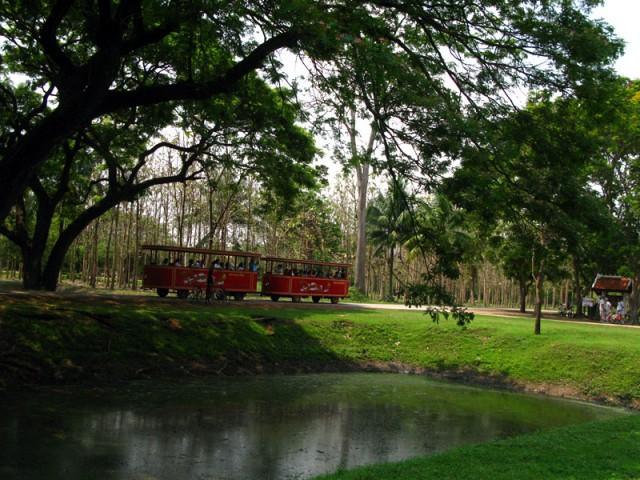 В таких красных фургончиках возят по Сукотаю туристов