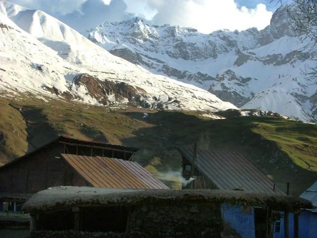Сросшиеся со скалами и снегом