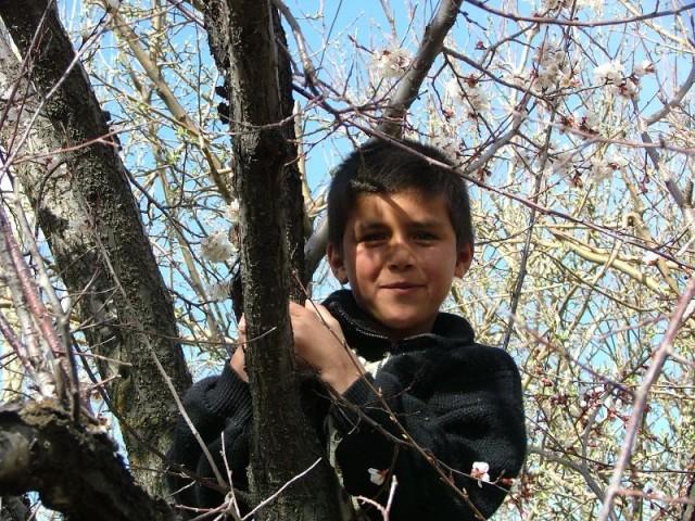 Этот мальчик лез постоянно в кадр))) В конце концов он залез на дерево, чтоб я его наконец УВИДЕЛА))))