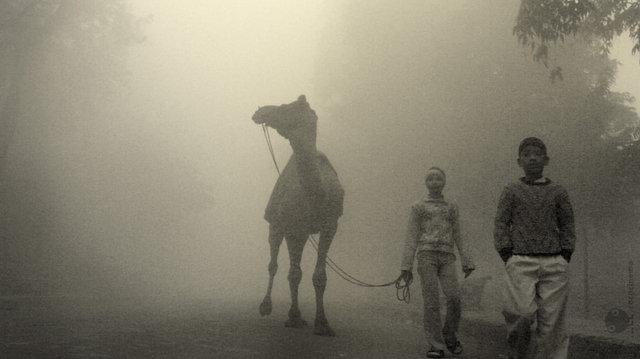 """""""что бы попасть в туман и посмотреть как там внутри..."""""""