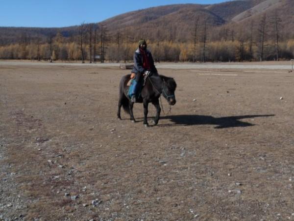Sanjee Xavier. на лошади по Монголии