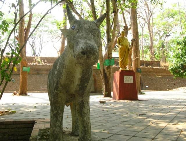 В монастыре Умонг, Чианг Май