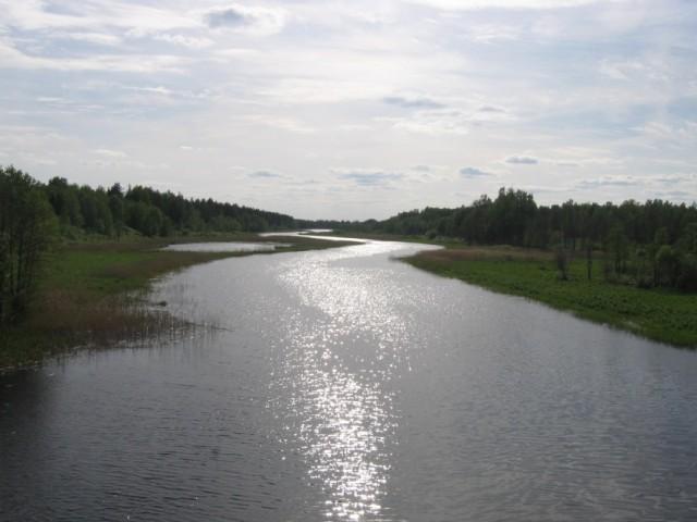 извилистая речка