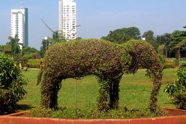 хотя слоны там - тоже живут..