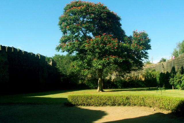 Напротив входа в крепость...на траве можно валяться бесплатно....сколько захочешь...хочется - долго!))