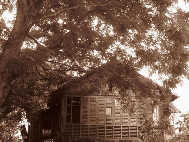 Дом шепчется с листвой