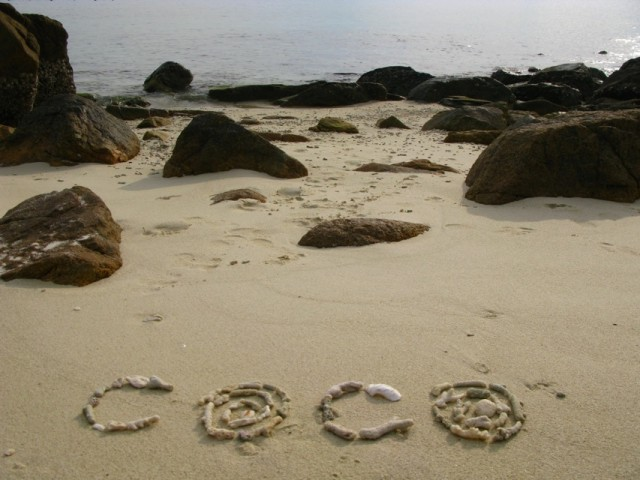 Коко, спасибо за идею и вообще за жизнь