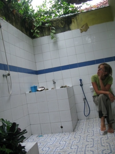 Вот такой у нас тропический туалет