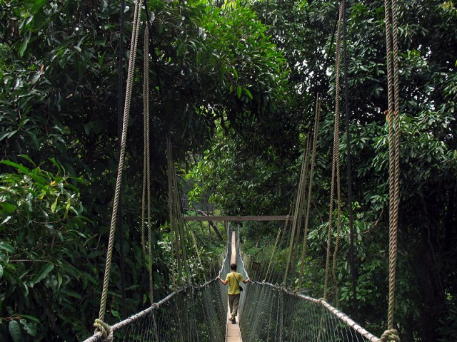 Канатная дорожка, парк Таман Негара