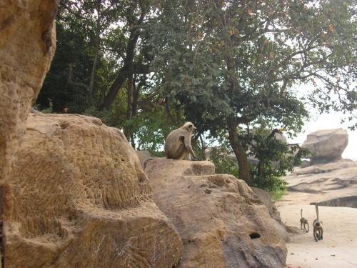 Удаягири и Кхандагири