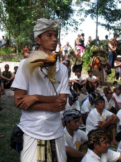 В ритуале участвует чучело райской птицы