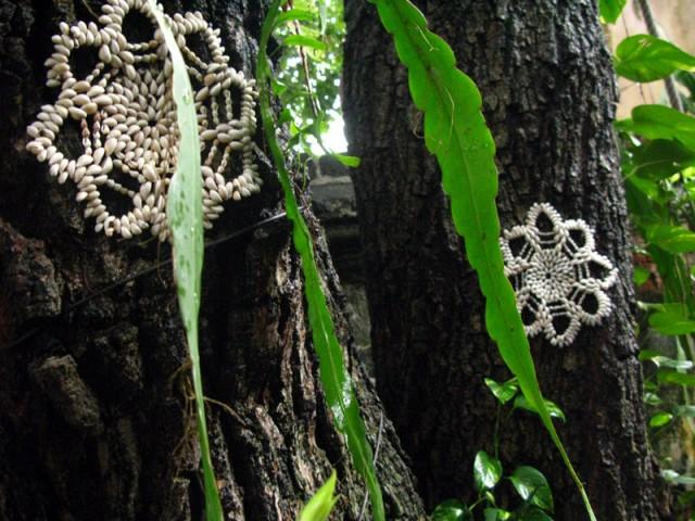 Звезды растут на деревьях