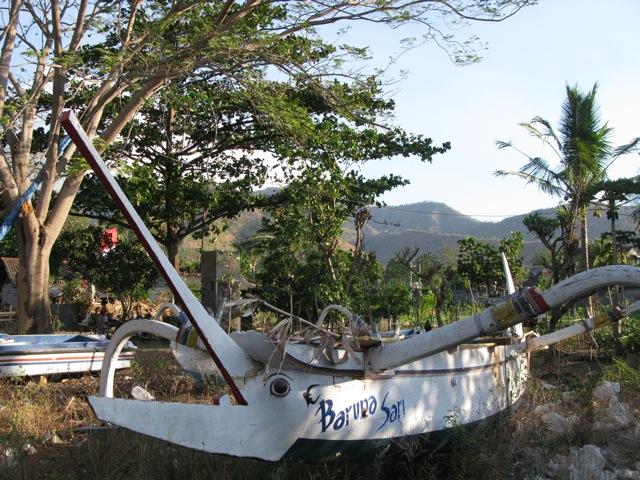 Лодка в Амеде