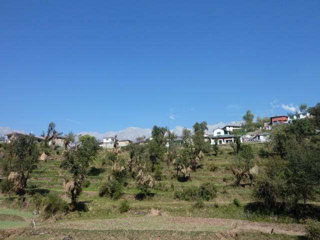 симпатичная  деревенька